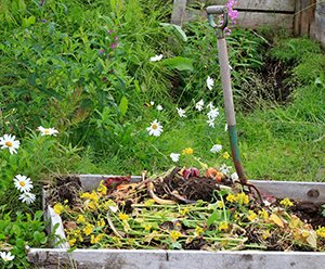Rural compost pile with a rustic pitch fork and flowers in the background - Using Colloidal Silver for Healthier Fruits and Vegetables