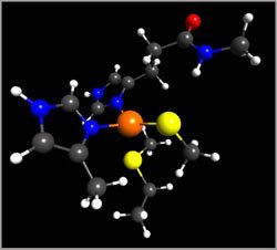 Metalloproteins – the Body's Transport Mechanism for Ionic Silver
