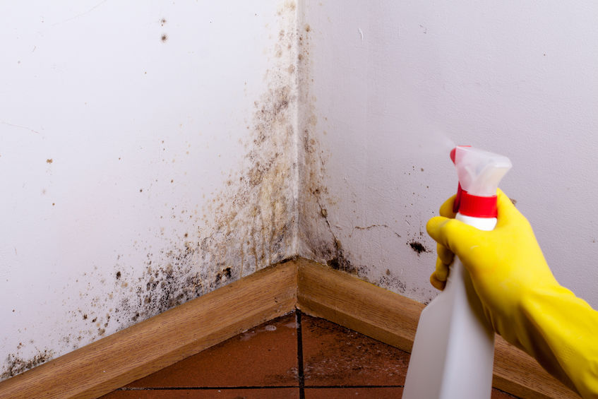 Using Colloidal Silver for Mold Growth in Your Bathroom
