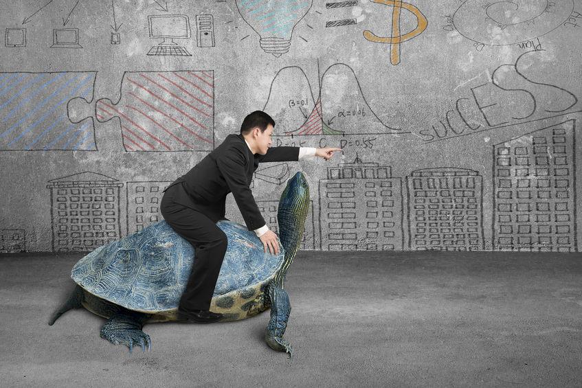 Man riding turtle - metallic silver slows healing