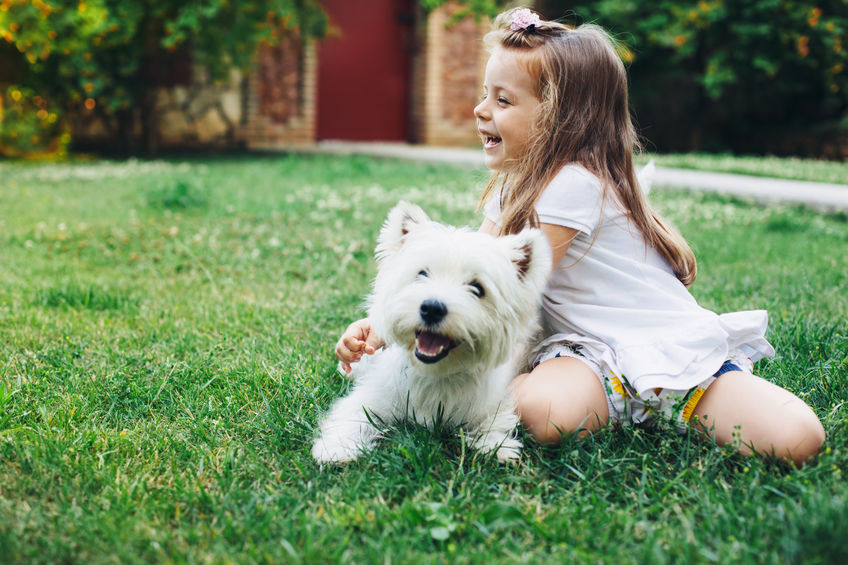 Child playing with a white dog in the grass in a backyard - Can Colloidal Silver Help Control Mosquitoes in Your Backyard?