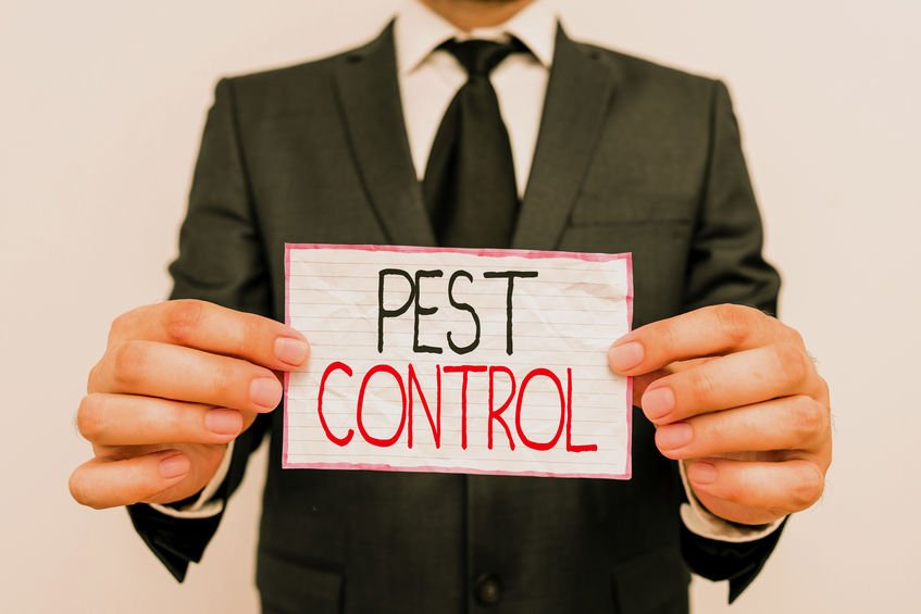 Man holding sign with handwriting text Pest Control - Using Colloidal Silver as a Safe, Natural Household Insecticide