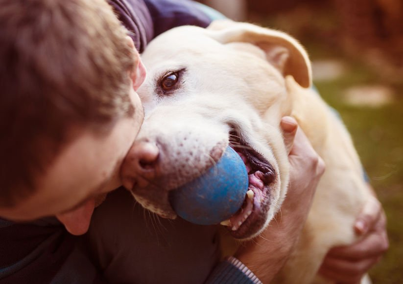 Man playing ball with his beloved dog - 15 Tips for Using Colloidal Silver with Pets