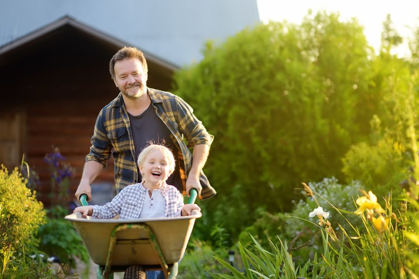 Happy little boy having fun in a wheelbarrow pushing by dad in domestic garden on warm sunny day - Healing Shingles Naturally with Colloidal Silver
