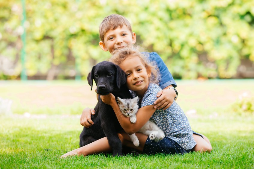 Cheerful brother and sister playing with the family pets in park - Getting Started Using Colloidal Silver for Healthier Pets